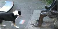 perro-estatua