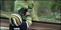 leona-bebe