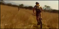 mountainbikeafrica
